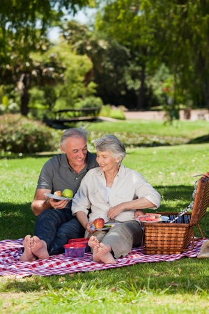 Elderly couple  picnicking in the garden  Stock Photo - 10199000