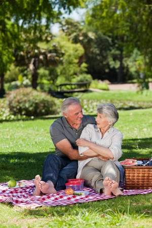 Mature couple  picnicking in the garden  photo