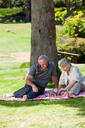 Senior couple  picnicking in the garden Stock Photo - 10219420
