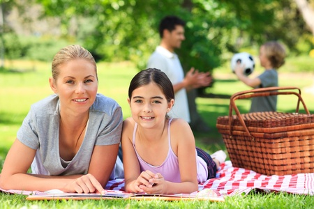 Family picnicking in the park Stock Photo - 10218192