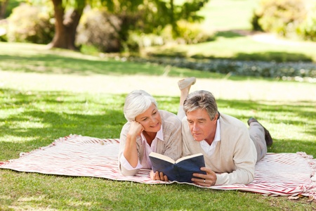 Couple reading a book in the park photo