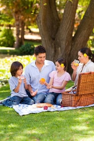 pique nique en famille: Belle famille pique-nique dans le parc