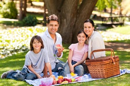 picnicking: Joyful family picnicking in the park Stock Photo
