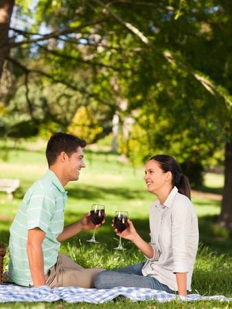 pique nique en famille: Jeune couple, aires de pique-nique dans le parc. Banque d'images