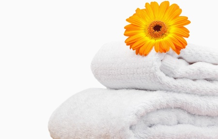 Close up of a sunflower on white towels photo