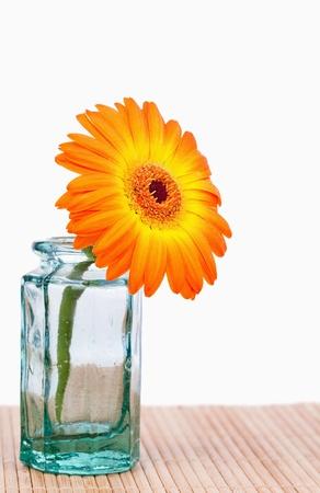 Orange sunflower in a glass flask photo