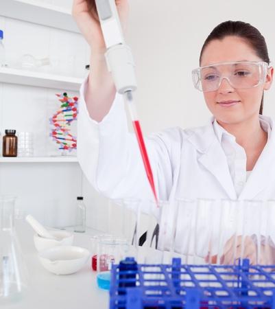 piastrine: Carino biologo femmina con una pipetta manuale con il campione da provette in un laboratorio Archivio Fotografico