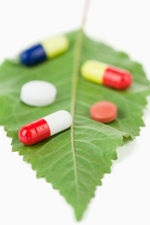 pharmaceutic: Pills on a leaf against a white background
