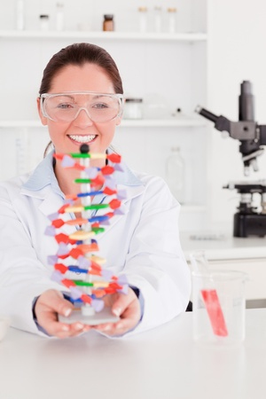 Portrait of a smiling scientist showing the dna double helix model photo