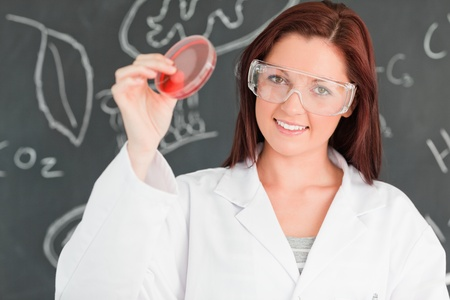 Cute scientist holding a petri dish in a classroom photo