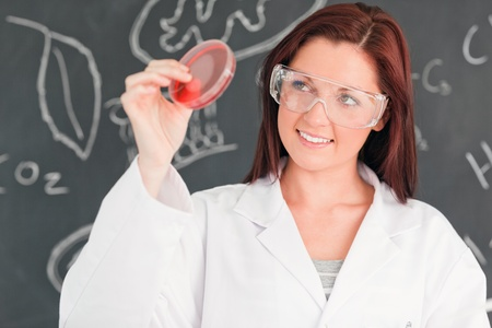 Red-haired scientist holding a petri dish in a classroom photo