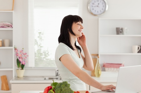Good looking brunette woman on the phone while relaxing with her laptop in the kitchen photo