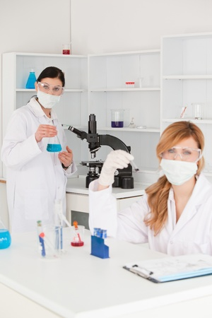 Blond-haired and dark-haired scientists conducting an experiment in a lab photo