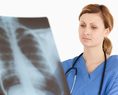 Concentrated female doctor looking at an X-ray on a white background Stock Photo - 10069347