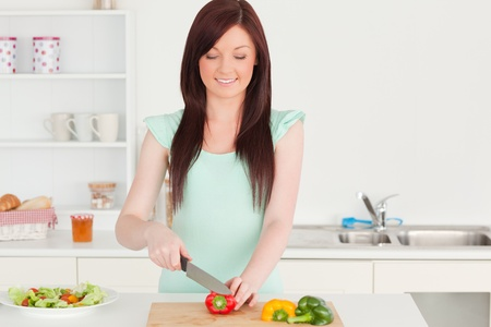 Attractive red-haired woman cutting some vegetables in the kitchen in her appartment Stock Photo - 10069411