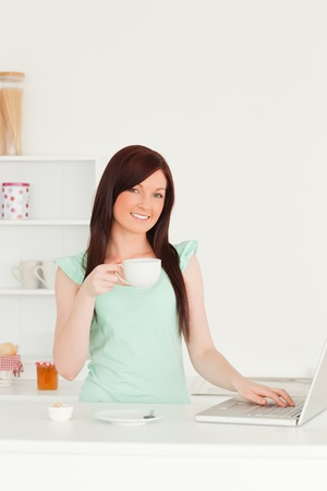 Gorgeous red-haired female relaxing with her laptop in the kitchen in her appartment photo