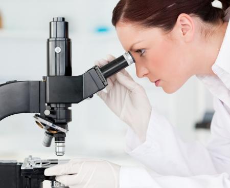 laboratorio: Atractivo cient�fico pelirrojo mirando a trav�s de un microscopio en un laboratorio Foto de archivo