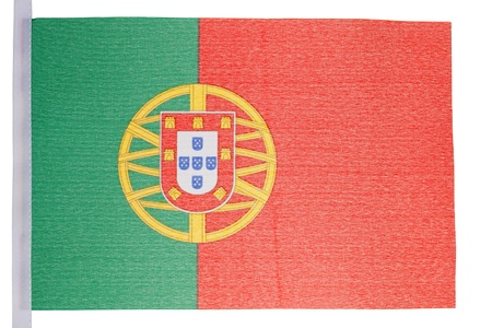 Portuguese flag against a white background photo