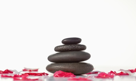 Pebbles stack and pink petals photo