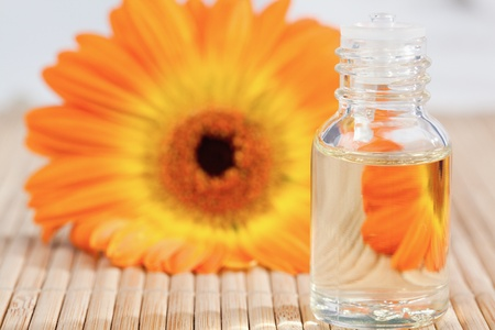 Close up on a glass phial and a sunflower photo