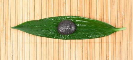 A black stone on a leaf photo