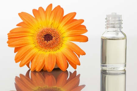 A glass phial and an orange gerbera against a white white background photo