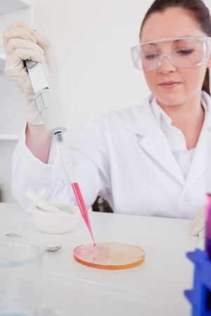Good looking red-haired scientist using a pipette in a lab Stock Photo - 10071001
