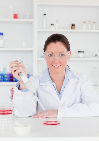 Young scientist preparing a sample while looking a the camera photo