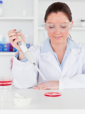 Portrait of a young scientist  preparing a sample photo