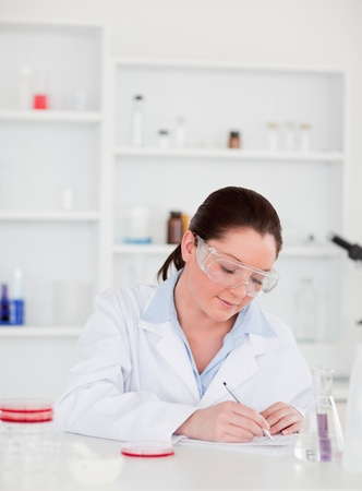 Portrait of a young scientist preparing a report Stock Photo - 10070133
