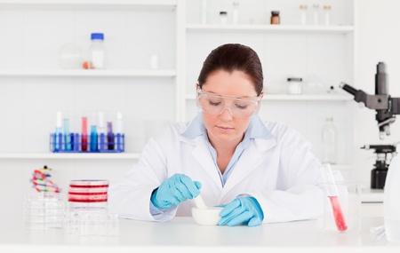 experimentation: Young scientist preparing an experimentation