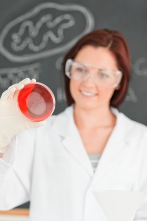 Portrait of a red-haired scientist looking at a petri dish in a classroom Stock Photo - 10072271