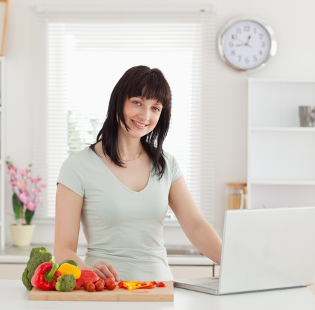 Beautiful brunette woman relaxing with her laptop while standing in the kitchen Stock Photo - 10069745