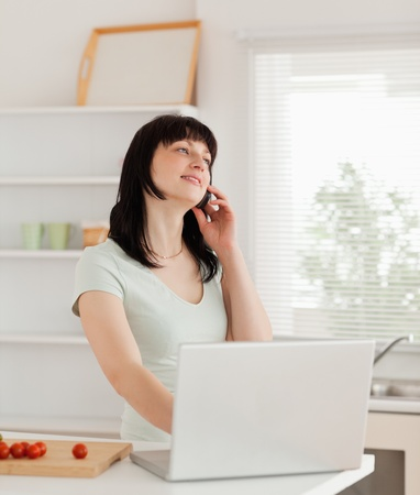 Beautiful brunette woman on the phone while relaxing with her laptop in the kitchen Stock Photo - 10069867
