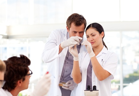 lab tech: People working in a laboratory Stock Photo