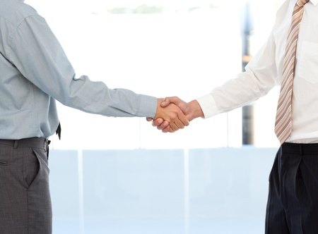Close up of two businessmen concluding a deal by shaking their hands photo