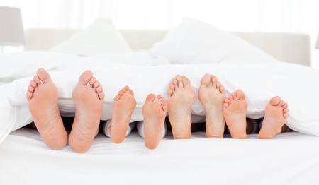 woman foot: Family Stock Photo