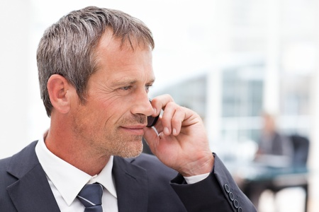 Businessman phoning in his office Stock Photo - 10173162