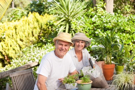 Smiling couple in the garden  photo