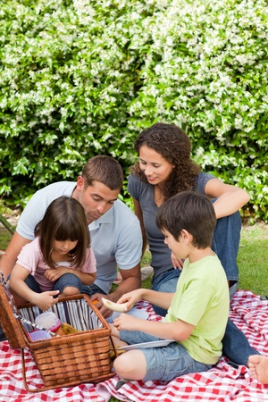 Family picnicking in the garden  photo
