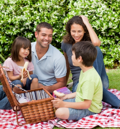 Family picnicking in the garden Stock Photo - 10220516