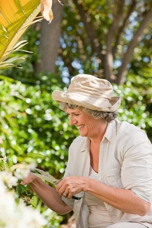 landlady: Pretty senior woman in her garden Stock Photo