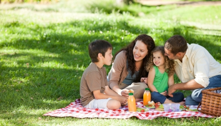 family park: Family  picnicking together Stock Photo