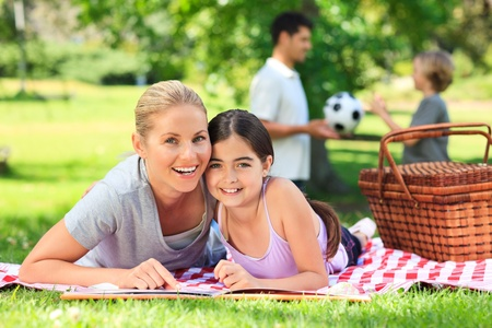Family picnicking in the park Stock Photo - 10198589