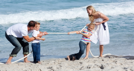 tug: Lively family playing tug of war
