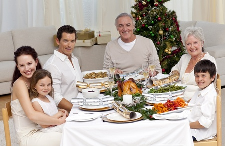 Family celebrating Christmas dinner Stock Photo - 10256395