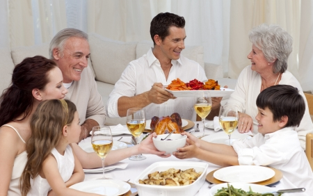 Family having a big dinner at home Stock Photo - 10246720