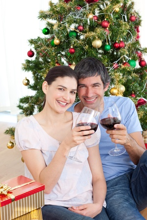 Couple drinking wine at homa at Christmas time Stock Photo - 10250397