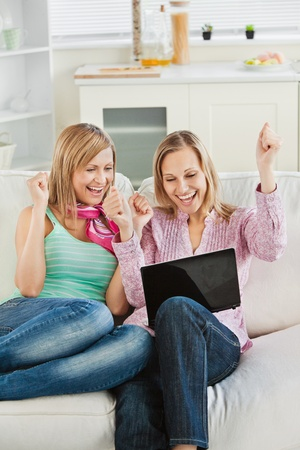Enthusiastic women looking at a laptop sitting on the sofa celebrating Stock Photo - 10249044