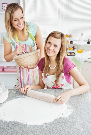 Animated female friends baking togehter Stock Photo - 10248865